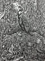 <h5>Cormorant</h5><p>Pen and Ink</p>