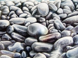 <h5>Pebbles with Feather</h5><p>Water Colour</p>