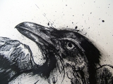 <h5>Raven</h5><p>Pen and Ink</p>